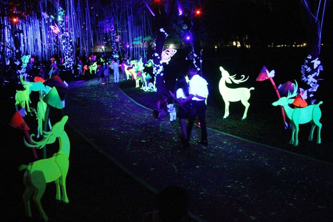 """""""Lạc lối"""" trong vườn ánh sáng độc nhất ở Sài Gòn dịp Giáng sinh - 9"""