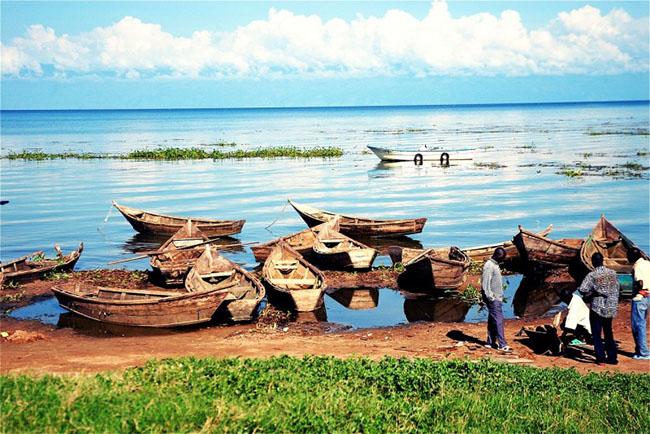 Hồ Victoria, Uganda: Hồ Victoria là hồ lớn nhất châu Phi và là một trong những hồ nước ngọt lớn nhất trên thế giới. Hồ cung cấp những bãi cát trắng chạy dài, những khu rừng xanh xum xuê và mặt nước trong veo với rất nhiều sinh vật đa dạng dưới nước.