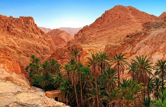 NúiChebika, Tunisia: Chebika là một thị trấn ốc đảo nhỏ nằm trên núi Djebel el Negueb. Thị trấn này luôn thu hút du khách với các cuộc phiêu lưu thú vị, khung cảnh đẹp của ốc đảo trên núi và cơ hội thưởng thức kỳ nghỉ châu Phi đích thực và kỳ diệu.
