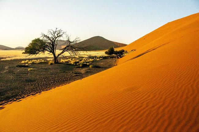Sa mạc Namib, Namibia: Sa mạc Namib là sa mạc lâu đời và lớn nhất trên thế giới và có cảnh quan tuyệt đẹp. Độ tuổi của nó ước tính khoảng 55 triệu năm. Sa mạc được coi là sa mạc đẹp nhất trên thế giới với cát màu đỏ và vàng tạo thành những cồn cát khổng lồ. Đây là nơi bạn sẽ tìm thấy các cồn cát cao nhất thế giới, cao tới 325m.