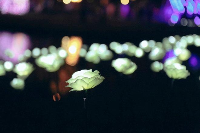 """""""Lạc lối"""" trong vườn ánh sáng độc nhất ở Sài Gòn dịp Giáng sinh - 14"""