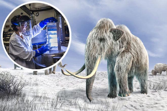 Những sinh vật đã tuyệt chủng trong Công viên kỷ Jura sắp được hồi sinh?