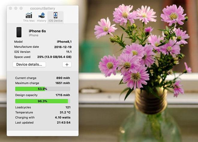 Cách kiểm tra số lần sạc trên iPhone, iPad - 4