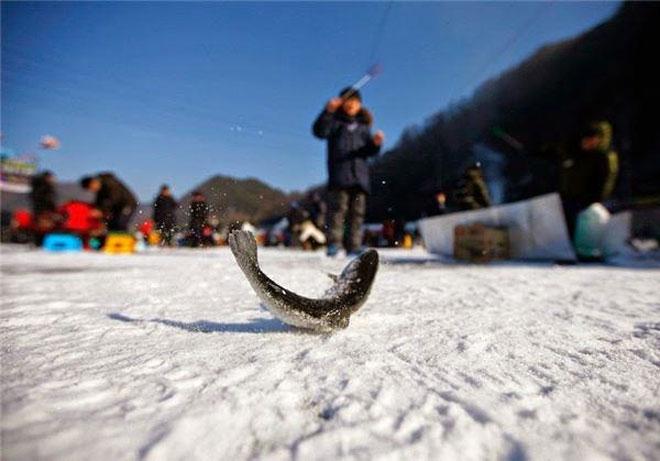 Đi Hàn Quốc mùa lạnh để thử ngay những thú vui ngoài trời không đâu có - 3