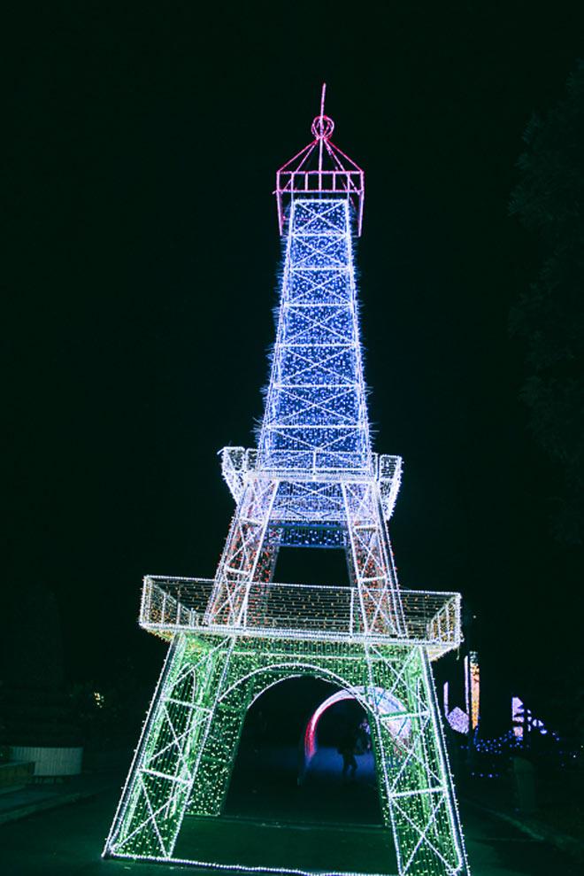 """9.999 đóa hồng bằng đèn led """"khoe sắc"""" tại sở thú ở Sài Gòn - 8"""