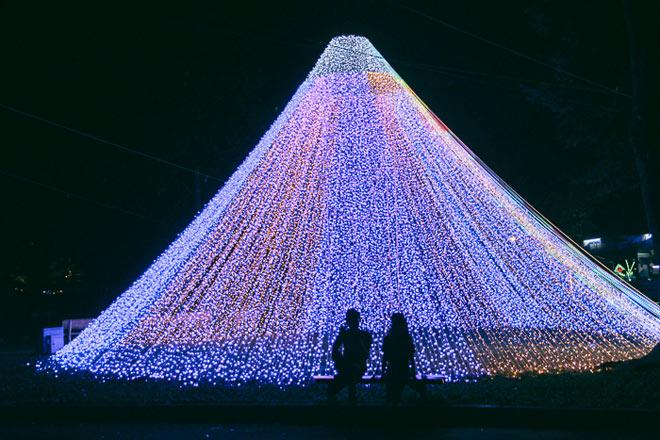 """9.999 đóa hồng bằng đèn led """"khoe sắc"""" tại sở thú ở Sài Gòn - 15"""