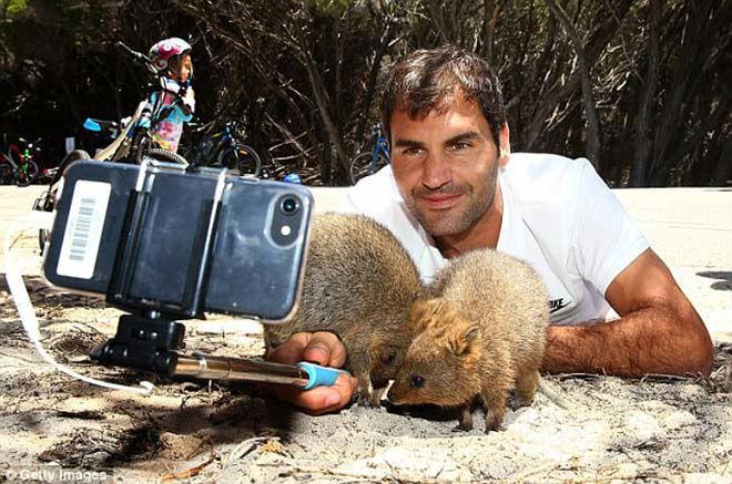 Thảnh thơi như Federer: Đón năm mới đặc biệt ở xứ sở chuột túi