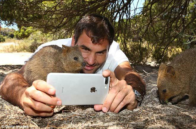 Thảnh thơi như Federer: Đón năm mới đặc biệt ở xứ sở chuột túi - 2