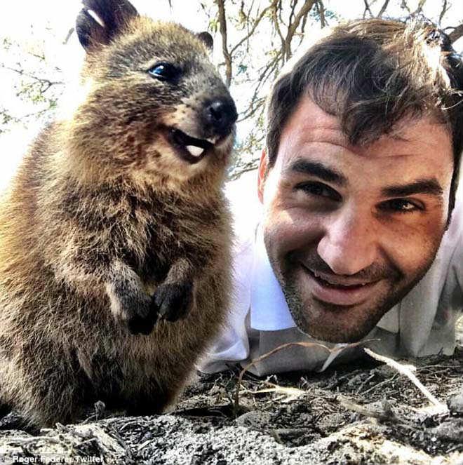 Thảnh thơi như Federer: Đón năm mới đặc biệt ở xứ sở chuột túi - 8