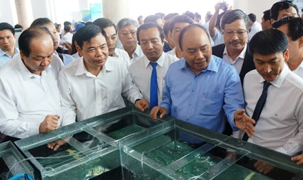 Thủ tướng: Đưa Việt Nam thành công xưởng tôm của thế giới - 1
