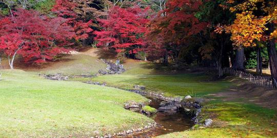 Lạc giữa ngôi làng thần tiên ở Nhật Bản - 2