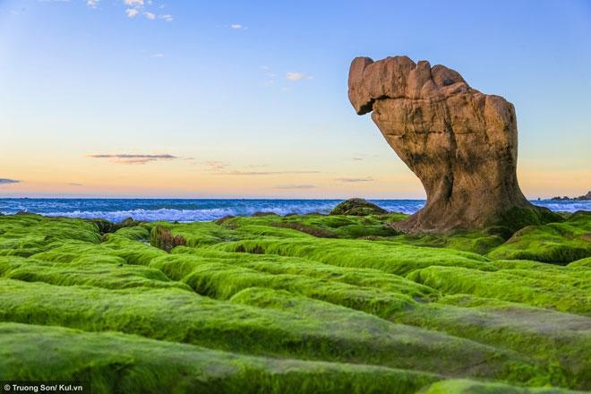 Xách balo lên và đi ngay Cổ Thạch ngắm mùa rêu xanh phủ lên đá - 4