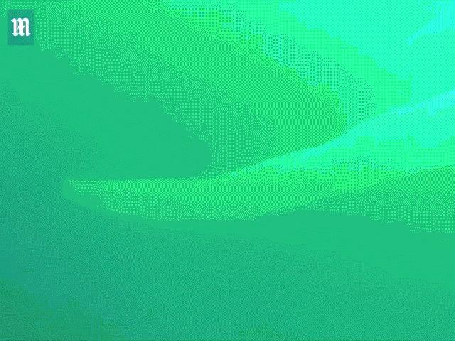 """Video: Thợ lặn hãi hùng vì sinh vật như """"bao cao su khổng lồ"""" xuất hiện trước mặt"""