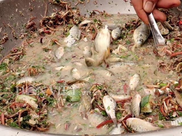Món cá nhảy tanh tách trong miệng, người nhìn thôi đã sợ, người ăn hoài không chán