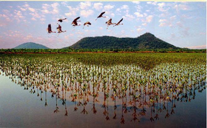Kiên Giang, thiên đường của những hòn đảo đẹp như tranh vẽ - 4