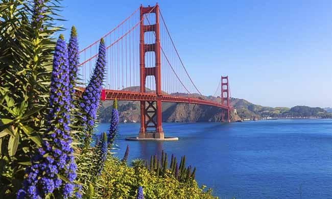 Hạ Long dẫn đầu top những vùng vịnh đẹp nhất thế giới - 8