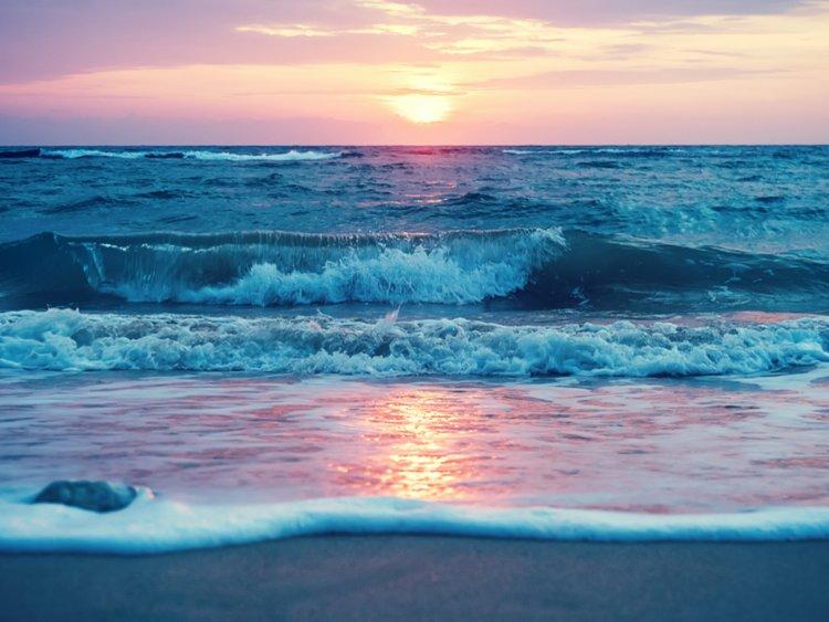Lạc xuống thủy cung với loạt ảnh đại dương đẹp ngỡ ngàng - 4