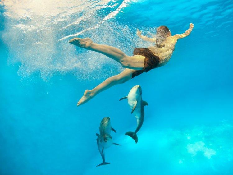 Lạc xuống thủy cung với loạt ảnh đại dương đẹp ngỡ ngàng - 8