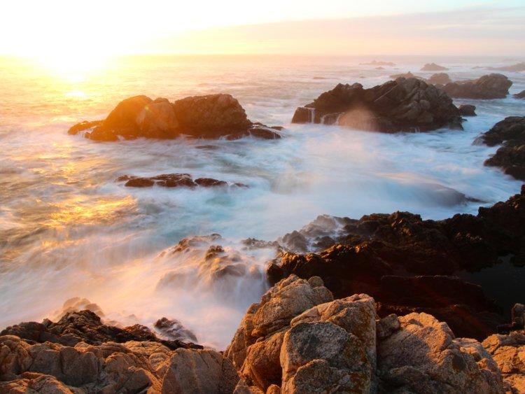 Lạc xuống thủy cung với loạt ảnh đại dương đẹp ngỡ ngàng - 7