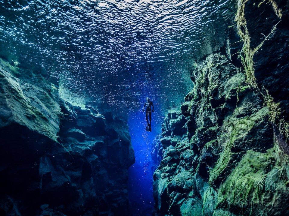 Lạc xuống thủy cung với loạt ảnh đại dương đẹp ngỡ ngàng - 13