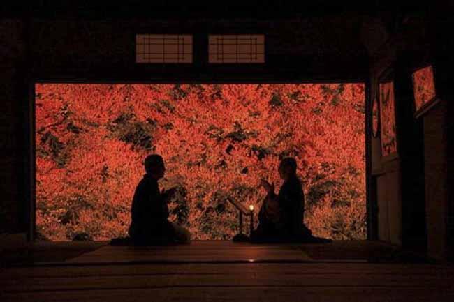 Những địa điểm đẹp như mơ nhưng chưa hề có tên trong những tour du lịch Nhật Bản - 7