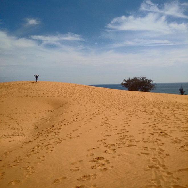 Hai ngày du hí trên vùng đất đẹp như mơ của nắng và gió mang tên Ninh Thuận - 13