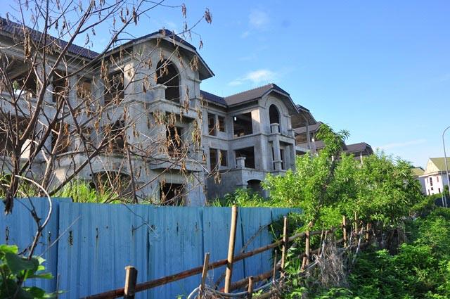Cận cảnh 44 biệt thự triệu USD bỏ hoang nhiều năm cạnh Hồ Tây - 10