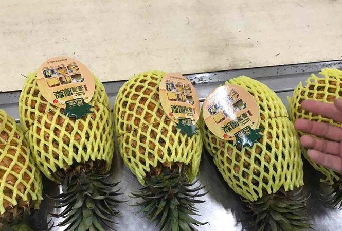Dứa nhập khẩu 300.000 một trái, dứa nội 3.000 đồng một kg - 1