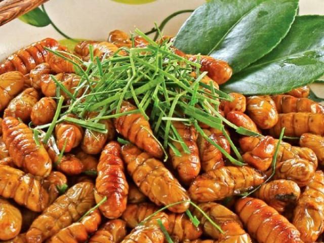 4 điều tối kỵ khi ăn nhộng tằm để không bị ngộ độc
