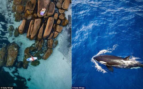 Bãi biển ở Australia đẹp hút hồn từ trên cao - 6