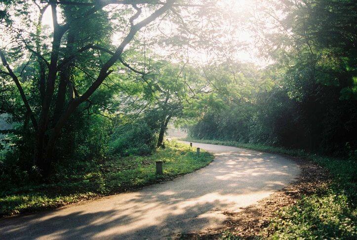 5 điểm mát xanh gần Hà Nội 'trốn nóng' những ngày hè 40 độ C - 9