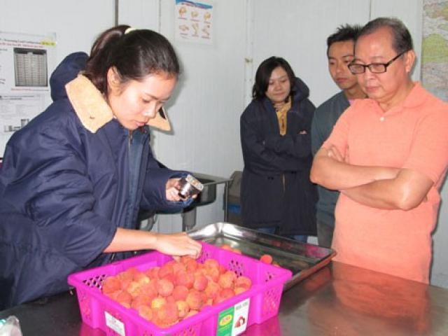 Áp lực từ cuộc chiến thương mại Mỹ - Trung (*): Nông sản Việt sẽ ra sao?