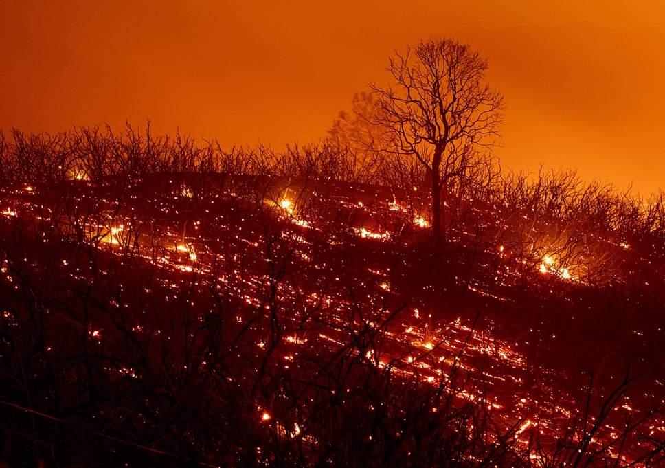Cảnh báo Trái Đất bước vào thảm họa không thể cứu vãn - 2