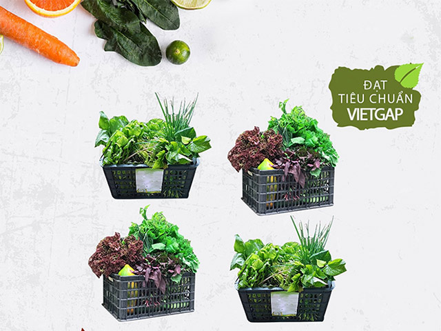 Ngồi nhà vẫn mua đủ rau cho cả tuần mùa dịch