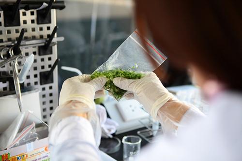 Khám phá xe kiểm nghiệm thực phẩm nhanh đầu tiên ở HN - 6