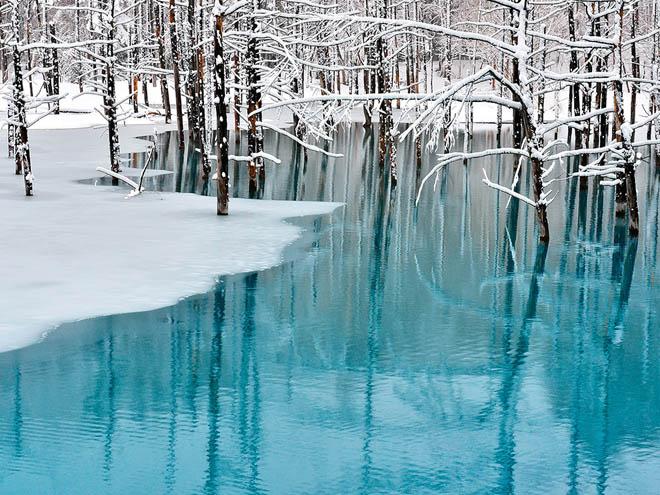 Hokkaido - điều kỳ diệu đến từ phương Bắc Nhật Bản - 2