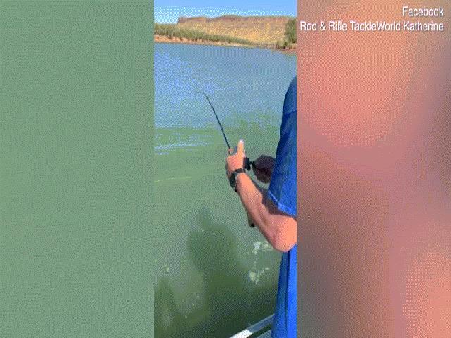"""Video: Tưởng câu được cá """"khủng"""", lôi lên mới biết là loài ăn thịt máu lạnh"""